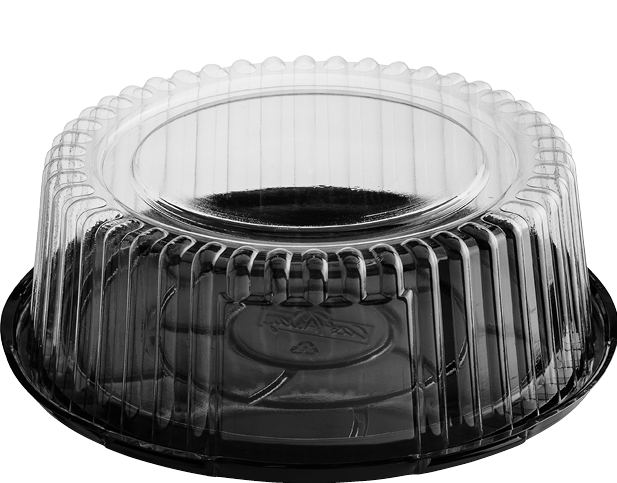 Cake Dome Plastic Container, Medium