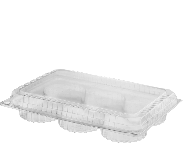 Bakery Plastic Storage Containers with Lid (Six Iced Donut Pack)