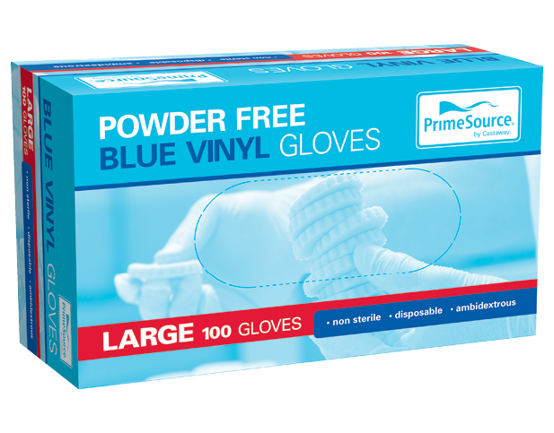 Vinyl Powder-Free Disposable Gloves (Blue Large)