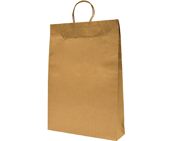 Brown Paper Carry Bags with Twisted Paper Handles (Large)