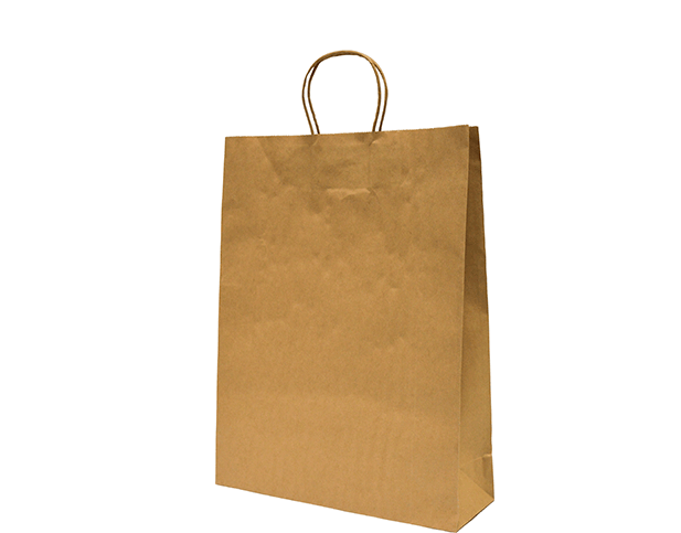 Brown Paper Carry Bags with Twisted Paper Handles (Medium)
