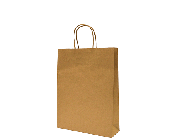 Brown Paper Carry Bag, Small with twisted paper handles